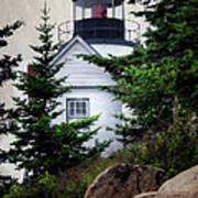 Bass Harbor Head Light Poster