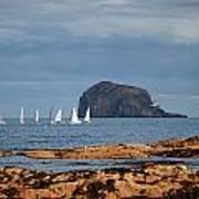 Bass Rock And Sail Boats Poster