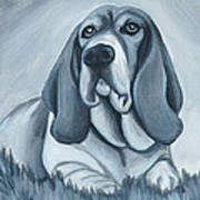 Basset Hound In Black And White Poster