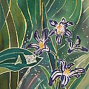 Batik Detail - Pushkinia Poster by Anna Lisa Yoder
