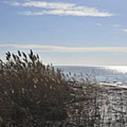 Bay Breeze In Winter Poster