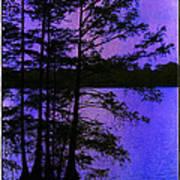 Bayou In Moonlight Poster