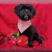Be My Valentine Poster by Rosalie Klidies