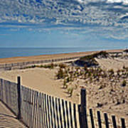 Beach At Cape Henlopen Poster