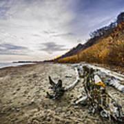 Beach At Scarborough Bluffs Poster by Elena Elisseeva