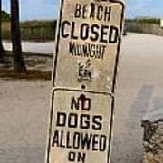 Beach Closed And No Dogs Allowed Poster