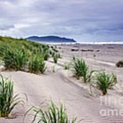 Beach Grass Poster by Robert Bales