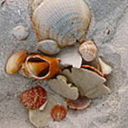 Beach Treasures Poster