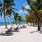Beachy Belize Poster