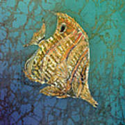 Beaked Butterflyfish Poster