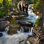Bear Necessity Poster