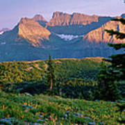Bear Valley Glacier National Park Poster