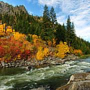 Beautiful Autumn Poster by Dan Mihai