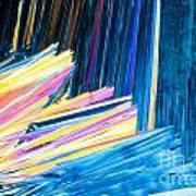 Beautiful Benzoic Acid  Microcrystals Abstract Art Poster