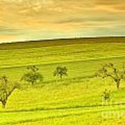 Beautiful Landscape In The Spring Poster by Regina Koch