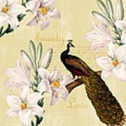 Beautiful Lilies Peacock Poster