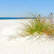 Beautiful Sand Dune Poster