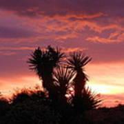 Beautiful Sunset In Arizona Poster