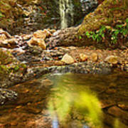 Beautiful View Of Upper Falls Located In Uvas Canyon County Park Forest Reflection Poster