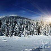 Beautiful Winter Landscape With Snow Covered Trees Poster by Boon Mee