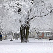 Beautiful Winter Park Poster