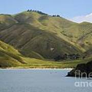 Beauty Of Cook Strait Poster