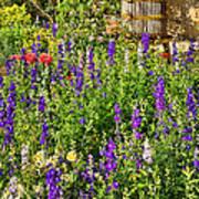 Becker Vineyards' Flower Garden Poster