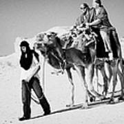 bedouin guide in modern clothing leads british tourists riding camels and wearing desert clothes into the sahara desert at Douz Tunisia Poster