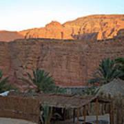 Beduin Camp In The Sinai Desert Egypt Poster by Colette V Hera  Guggenheim