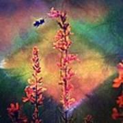 Bee N Wildflowers Diamond Earth Tones Poster