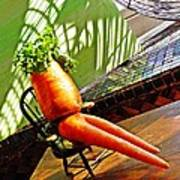 Beer Belly Carrot On A Hot Day Poster by Sarah Loft