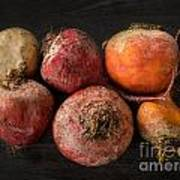 Beets In Different Colors On A Dark Background Poster
