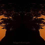 Befogged Head Lights Poster
