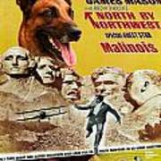 Belgian Malinois Art Canvas Print - North By Northwest Movie Poster Poster