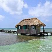 Belize Pier And Seascape Poster
