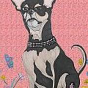 Bella Bella Pink Poster