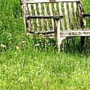 Bench At Hillstead Poster