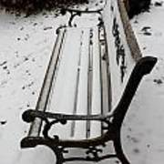 Bench In Snow Poster