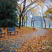 Benches Of Fall Poster