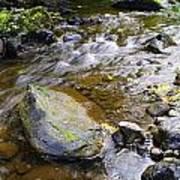 Bending Between The Rocks Poster
