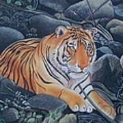 Bengal Tiger Wild Life Realistic Painting Water Color Handmade Artwork India Uk Poster