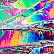Benzoic Acid Crystals In Polarized Light Poster