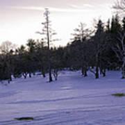 Berkshires Winter 5 - Massachusetts Poster by Madeline Ellis