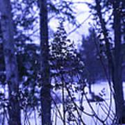 Berkshires Winter 8 - Massachusetts Poster