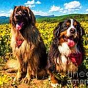 Bernese Mountain Dog And Leonberger Among Wildflowers Poster