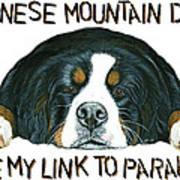 Bernese Mountain Dog Paradise Poster