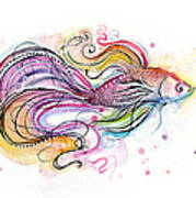 Betta Fish Watercolor Poster