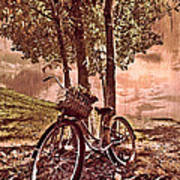 Bicycle In The Park Poster