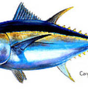 Big Eye Tuna Poster