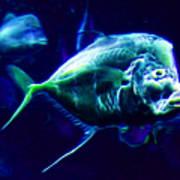 Big Fish Small Fish - Electric Poster